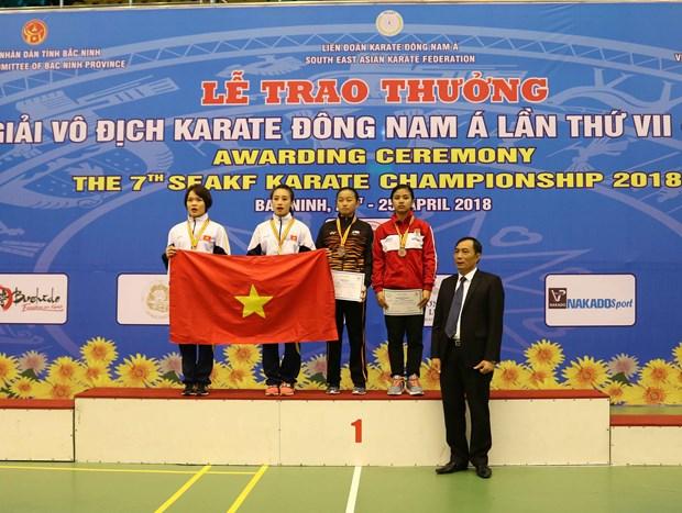 越南在第七届东南亚空手道锦标赛夺得29枚金牌 hinh anh 1