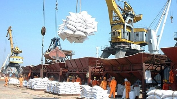 越南采取措施减轻物流费用的负担 hinh anh 1