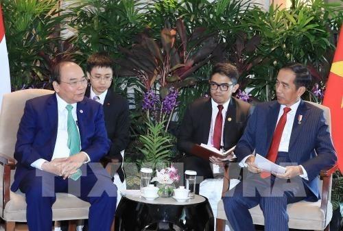 阮春福同印尼和缅甸两国总统举行双边会晤 hinh anh 1