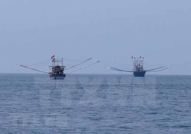 坚江省对外公布违反IUU警告的渔船和船主名单 hinh anh 1