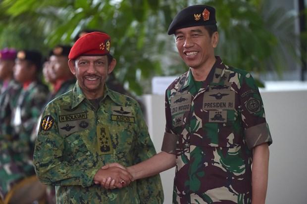 印尼与文莱加强多方面合作 hinh anh 1