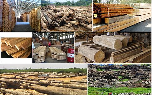 2018年越南木材和木制品出口额可达90亿美元 hinh anh 1