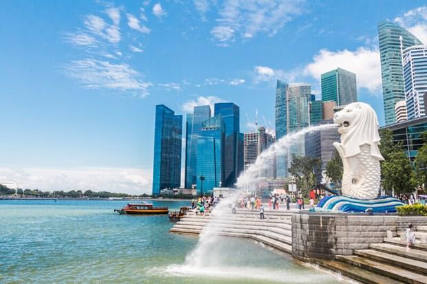 新加坡日益颇受越南游客的目光 hinh anh 1