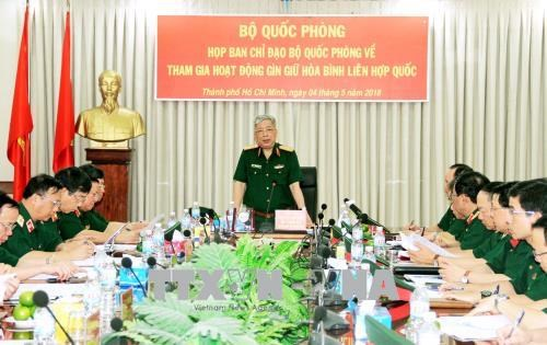 越南参与联合国维和行动的准备工作就绪 hinh anh 1