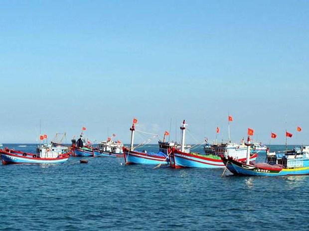 越南不再发生非法捕捞现象 hinh anh 1