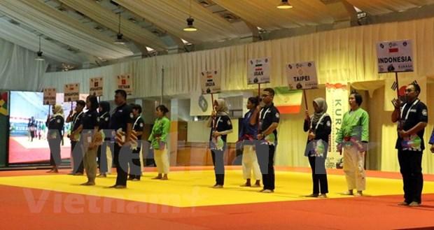 第十八届亚洲运动会:越南参加印度尼西亚克柔术比赛 hinh anh 1