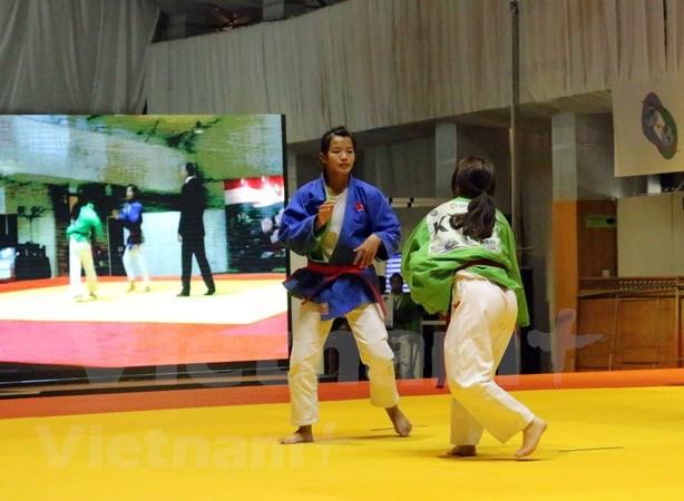 第十八届亚洲运动会:越南参加印度尼西亚克柔术比赛 hinh anh 2