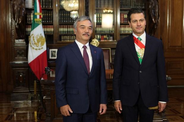 墨西哥总统承诺加强越墨多领域合作 hinh anh 2