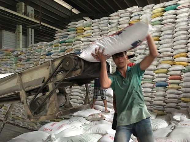 越南将向菲律宾出售13万吨大米 2018年大米出口量有望达650万吨 hinh anh 1