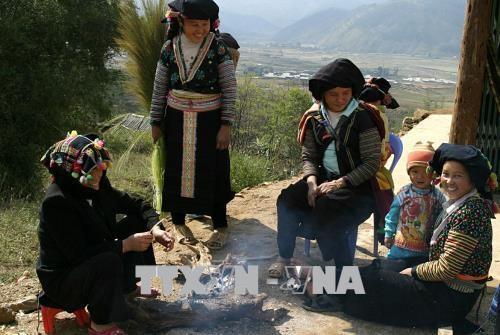 莱州省:与中国接壤的会笼乡非法出境务工人员情况大幅下降 hinh anh 1