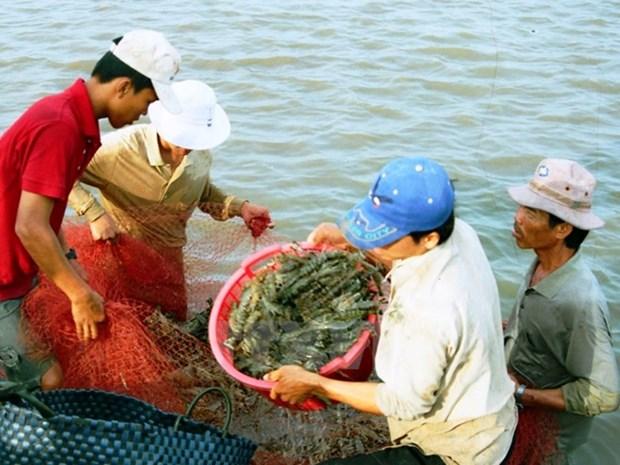 越南水产品养殖产量增长6% hinh anh 2