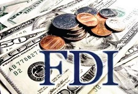 外国投资者对越南的投资环境和发展前景充满信心 hinh anh 1