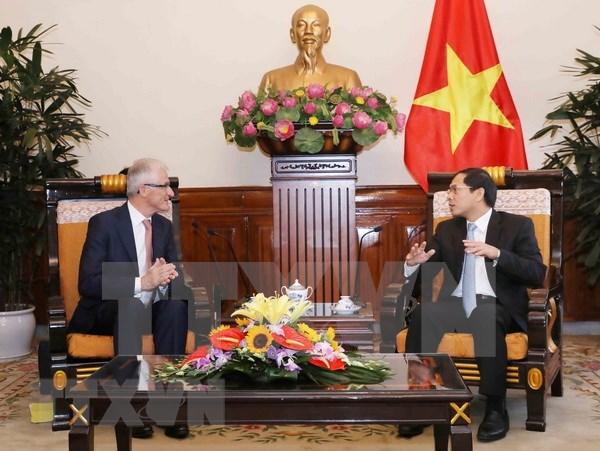 比利时法兰德斯大区始终将越南视为优先合作伙伴 hinh anh 2