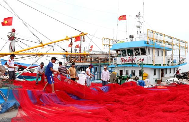 越南中部各省致力解决海洋环境污染事故 恢复灾区生产经营活动 hinh anh 1