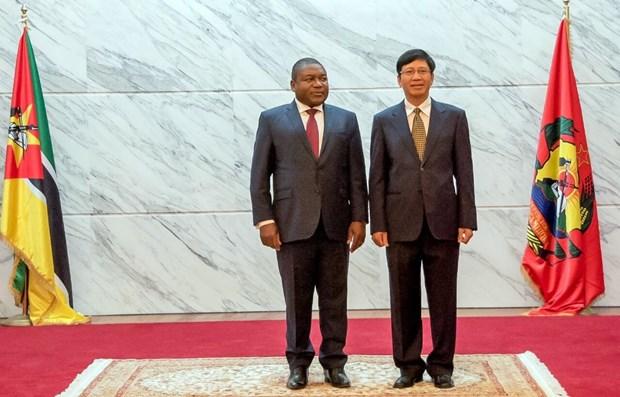 莫桑比克十分重视加大与越南的合作力度 hinh anh 1