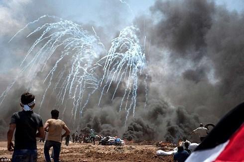越南国家主席陈大光向巴勒斯坦总统致唁电 hinh anh 1