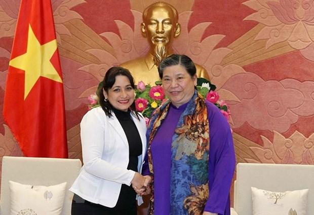 越南国会常务副主席丛氏放会见古共青盟第一书记 hinh anh 1