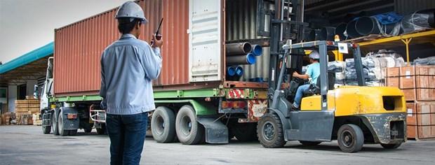 世行协助越南发展物流产业 hinh anh 1