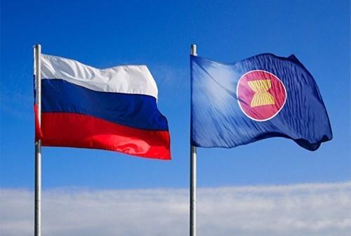 越南出席第十五次东盟与俄罗斯高官会 hinh anh 1