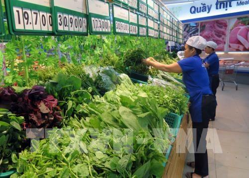 致力在日本推广越南农产品的品牌形象 hinh anh 1