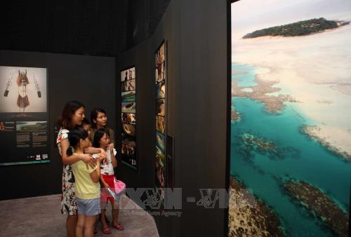 """""""复活:托雷斯海峡地区的面具"""" 展览会在河内开展 hinh anh 2"""