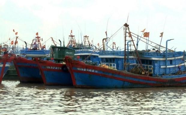 越南与中国举行海上低敏感领域合作专家工作组第十一轮磋商 hinh anh 1