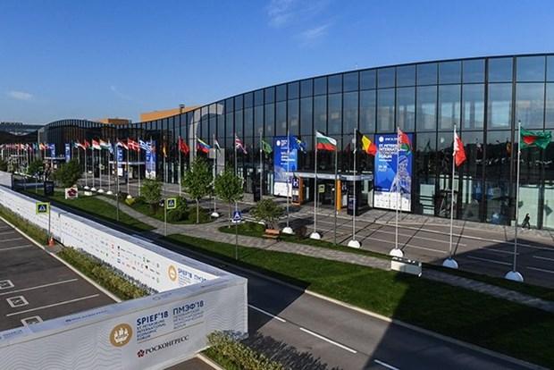 越南代表出席俄罗斯第22届圣彼得堡国际经济论坛 hinh anh 1