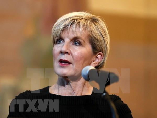 澳大利亚外长:澳大利亚希望进一步深化与越南合作关系 hinh anh 1
