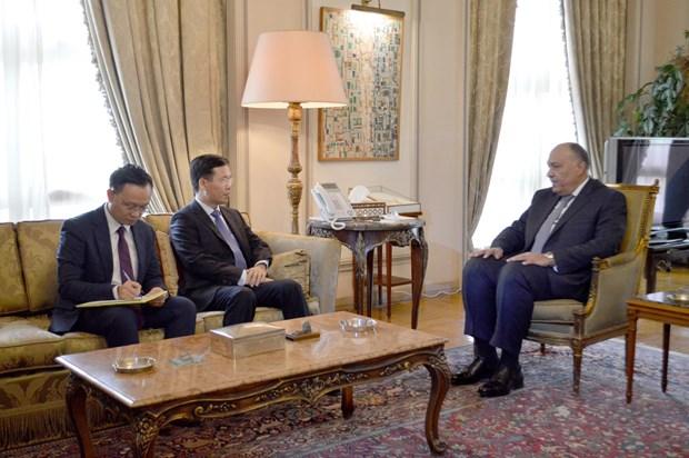 越共中央宣教部部长武文赏对埃及进行工作访问 hinh anh 3