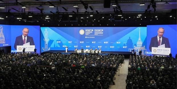 越南为第22届圣彼得堡国际经济论坛的成功作出积极贡献 hinh anh 2