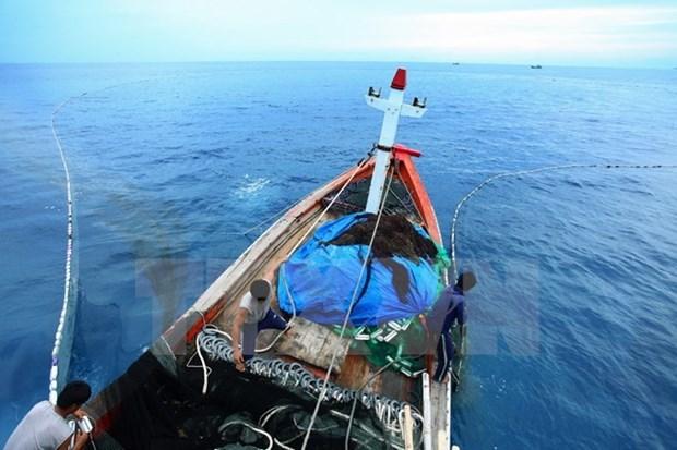为越南出口海产品取回'绿牌':强力寄语、果断措施 hinh anh 1