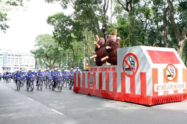 越南举行集会 响应世界无烟日和国家无烟周 hinh anh 1