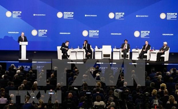 越南为第22届圣彼得堡国际经济论坛的成功作出积极贡献 hinh anh 1