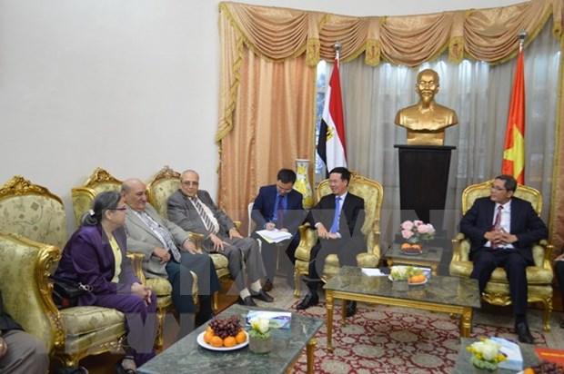 越共中央宣教部部长武文赏对埃及进行工作访问 hinh anh 2