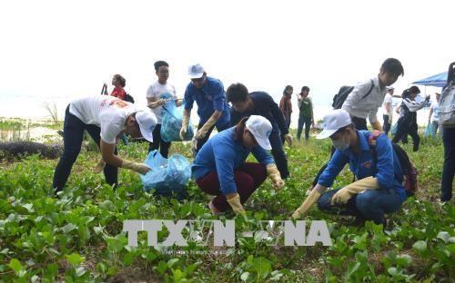 近500名青年团员参加绿色越南海洋运动 hinh anh 2