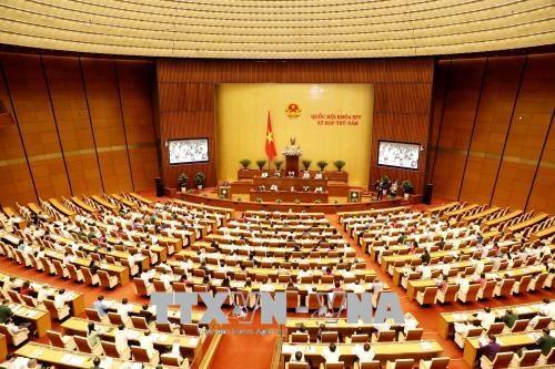 国会就企业国有资产监督管理和股份制改革提出意见 hinh anh 1