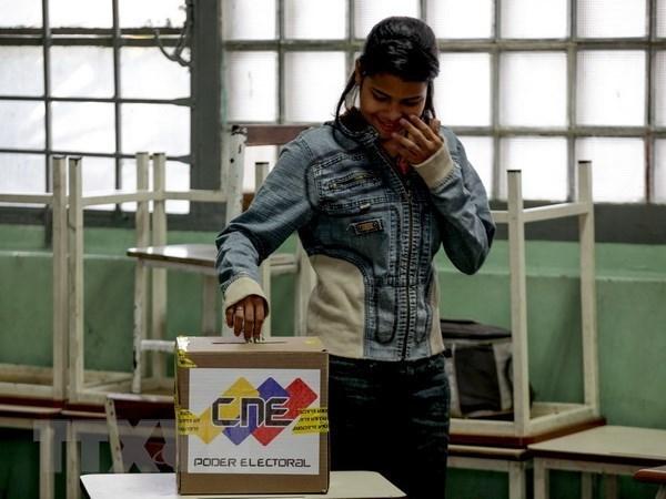 越南尊重委内瑞拉人民在总统选举中的选择 hinh anh 1