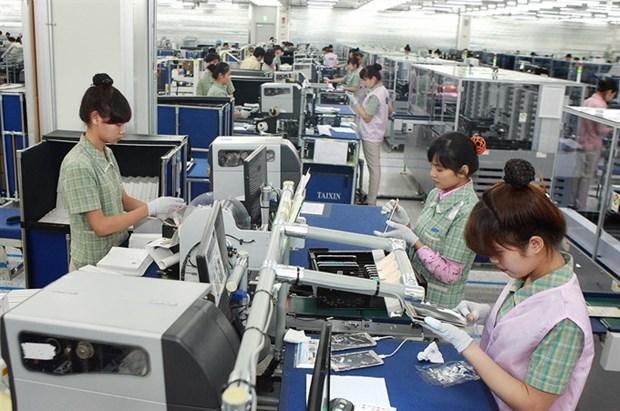 茶荣省力争到2020年运营企业数量为4千家 hinh anh 1