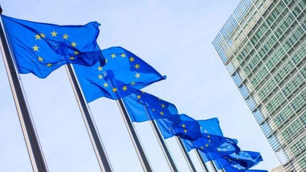 欧盟与亚洲伙伴加强安全合作 hinh anh 1