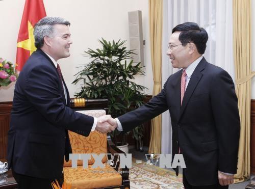 越南政府副总理兼外长范平明会见美国参议员代表团 hinh anh 1