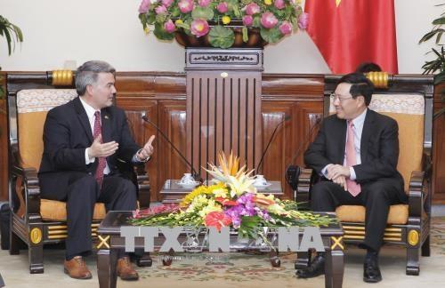 越南政府副总理兼外长范平明会见美国参议员代表团 hinh anh 2