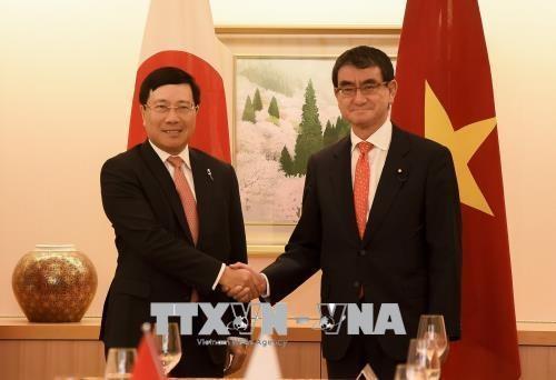 政府副总理兼外交部长范平明与日本外务省大臣河野太郎举行会谈 hinh anh 1