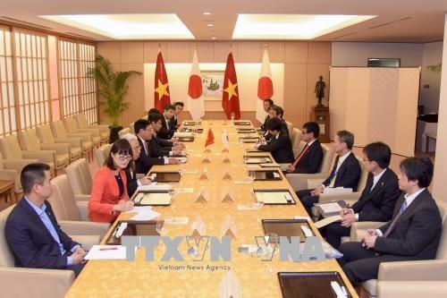 政府副总理兼外交部长范平明与日本外务省大臣河野太郎举行会谈 hinh anh 2