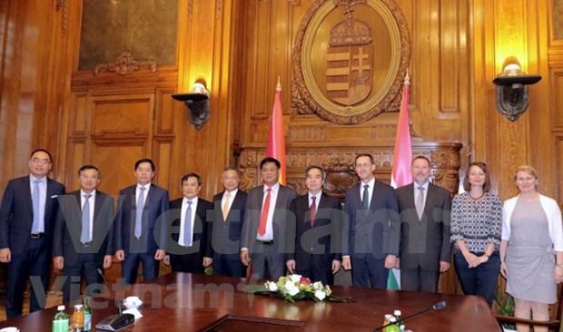 越南与匈牙利发展多方面合作关系 hinh anh 1