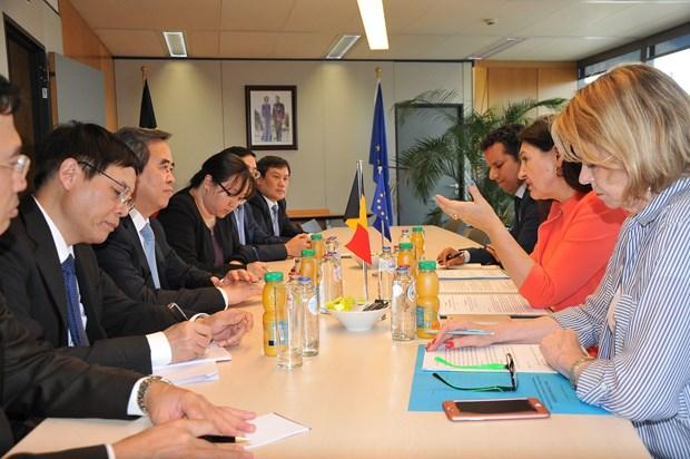 越南优先与比利时和欧盟发展经济合作 hinh anh 3