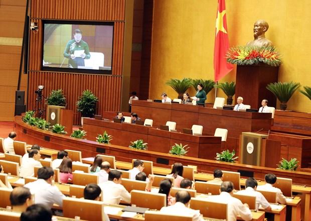 越南第14届国会第5次会议:阮氏金银要求有效合法使用基础设施投资专项资金 hinh anh 2