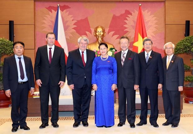 越南国会主席阮氏金银会见捷克众议院副议长沃伊捷赫•菲利普 hinh anh 2