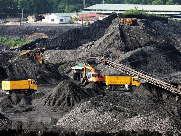 越南煤炭矿产工业集团力争提高销售量减少库存量 hinh anh 1