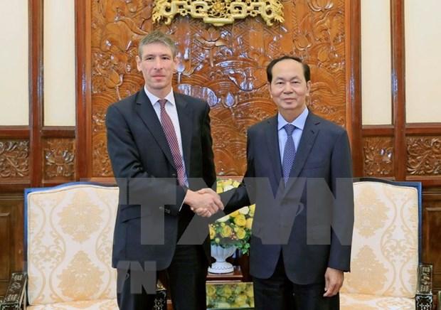 国家主席陈大光:越南重视加强越英战略伙伴关系 hinh anh 1