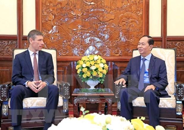 国家主席陈大光:越南重视加强越英战略伙伴关系 hinh anh 2